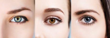 Collage degli occhi variopinti Fotografia Stock Libera da Diritti