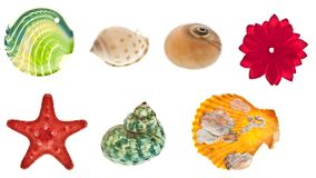 Collage degli oggetti del mare Fotografia Stock Libera da Diritti