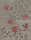 Collage degli uccelli e di varie piante Immagini Stock