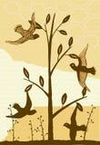 Collage degli uccelli e di varie piante Fotografia Stock Libera da Diritti