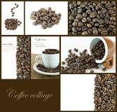 Collage dei chicchi di caffè Fotografie Stock Libere da Diritti