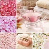 Collage dei cosmetici della stazione termale Fotografia Stock