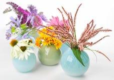 Collage dei fiori dell'erba Fotografia Stock Libera da Diritti