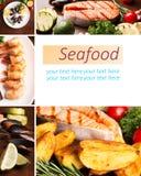Collage dei frutti di mare Fotografia Stock Libera da Diritti