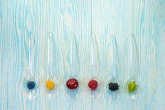 Collage dei frutti differenti e bacche isolate su bianco Mirtilli, ciliege, more, fragole, uva passa Vista superiore Immagine Stock Libera da Diritti