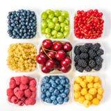 Collage dei frutti differenti e bacche isolate su bianco Mirtilli, ciliege, more, uva, fragole, uva passa Co Fotografia Stock Libera da Diritti