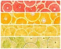Collage dei frutti freschi di estate Immagini Stock Libere da Diritti
