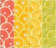 Collage dei frutti freschi di estate Immagine Stock