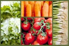 Collage dei ingridients dell'insalata Fotografie Stock Libere da Diritti