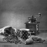Collage dei particolari del caffè Cioccolato, cannella, spezie e chicchi di caffè in tazza e uno sciolto sul nero di legno della  Immagine Stock Libera da Diritti