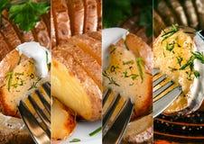 Collage dei piatti della patata con i verdi e la salsa Immagini Stock Libere da Diritti