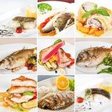 Collage dei piatti di pesce Immagine Stock