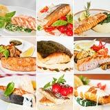 Collage dei piatti di pesce Fotografia Stock