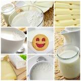 Collage dei prodotti lattier-caseario Fotografia Stock Libera da Diritti
