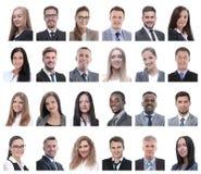 Collage dei ritratti della gente di affari isolata su bianco fotografia stock