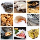 Collage del alimento de mar Imagen de archivo libre de regalías