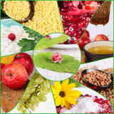 Collage del alimento sano Foto de archivo