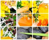 Collage del balneario de la salud Foto de archivo libre de regalías
