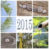 2015, collage del bambù di zen Fotografie Stock Libere da Diritti