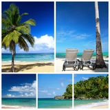 Collage del Caribe Foto de archivo