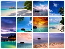Collage del centro turístico de Maldives Fotos de archivo libres de regalías