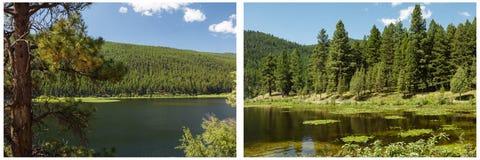 Collage del cielo de las montañas del bosque del lago Imagenes de archivo