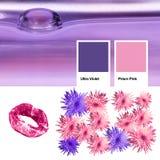 Collage del color de moda del año 2018 ultravioleta, bebidas espirituosas emparentadas de las fotos con rosa de la prisma Flores  imagen de archivo libre de regalías