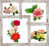 Collage del diversas flores Flores artificiales hechas de spo Imagenes de archivo