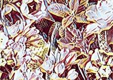 Collage del fiore del giardino Fotografia Stock Libera da Diritti