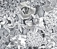 Collage del fiore del giardino Immagini Stock Libere da Diritti