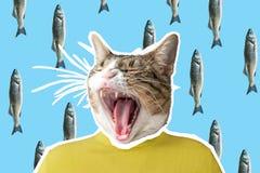 Collage del gato y de los pescados, diseño de concepto del arte pop Fondo vibrante mínimo imagen de archivo