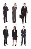 Collage del gruppo multietnico di affari immagine stock libera da diritti