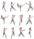 Collage del hombre del karate Imagenes de archivo