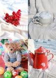 Collage del invierno con cuatro fotos Imágenes de archivo libres de regalías