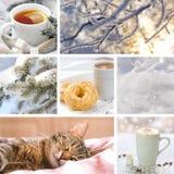 Collage del invierno con paisajes, café y el gato el dormir Fotografía de archivo libre de regalías