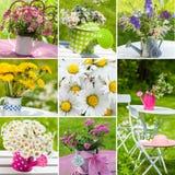 Collage del jardín del verano Fotografía de archivo libre de regalías