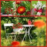 Collage del jardín del verano Imagen de archivo libre de regalías