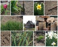 Collage del lavoro della sorgente Fotografie Stock Libere da Diritti