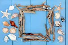 Collage del legname galleggiante e di Shell Fotografia Stock