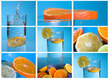 Collage del limón fotografía de archivo libre de regalías