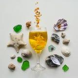 Collage del mare delle conchiglie e dei ciottoli su un fondo bianco immagini stock libere da diritti