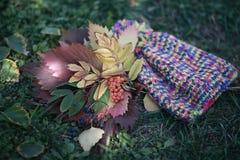 Collage del otoño Fotos de archivo libres de regalías