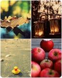Collage del otoño con cuatro fotos Fotografía de archivo