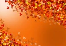 Collage del otoño Fotos de archivo