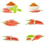 Collage del peperoncino di cayenna dei peperoncini rossi Immagini Stock