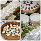 Collage del queso y del yogur Foto de archivo