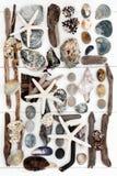 Collage del tesoro della spiaggia Fotografie Stock