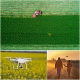 Collage del tiro degli impianti agricoli dal fuco Fotografie Stock
