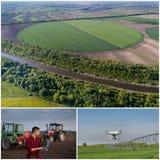 Collage del tiro degli impianti agricoli dal fuco Immagine Stock