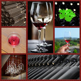 Collage del vino. Immagine Stock